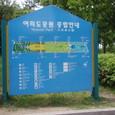 I. 汝矣島(ヨイド)公園(2)